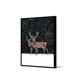 Toile encadré Duo cerfs dans la neige 50 x 70 cm, collection My gallery, Pôdevache