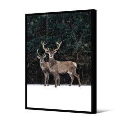 Toile encadré Duo cerfs dans la neige 80 x 120 cm, collection My gallery, Pôdevache