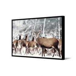 Toile encadré Groupe de cerfs, format paysage 80 x 120 cm, collection My gallery, Pôdevache
