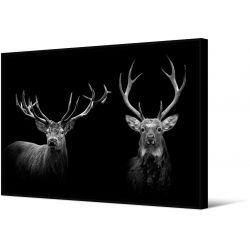 Toile encadré Duo cerf noir et blanc, 100 x 140 cm, collection My gallery, Pôdevache