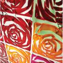 20 carrés séparations design Romance, Koziol rouge transparent