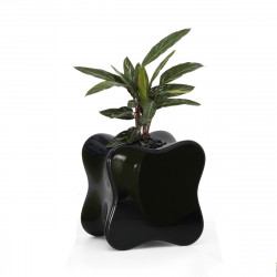 Table Basse design Doux, Vondom noir