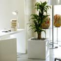 Pot Cubo 50 cm, laqué brillant, Vondom blanc