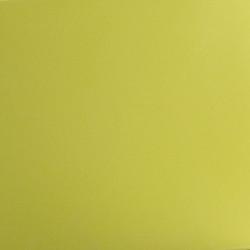 Coussin d\'assise pour chaise avec accoudoirs Jut vert pistache