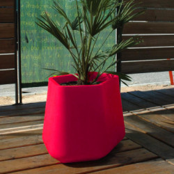 Pot Rock Garden Medium, Qui est Paul ? fuchsia