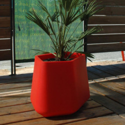 Pot Rock Garden Medium, Qui est Paul ? rouge