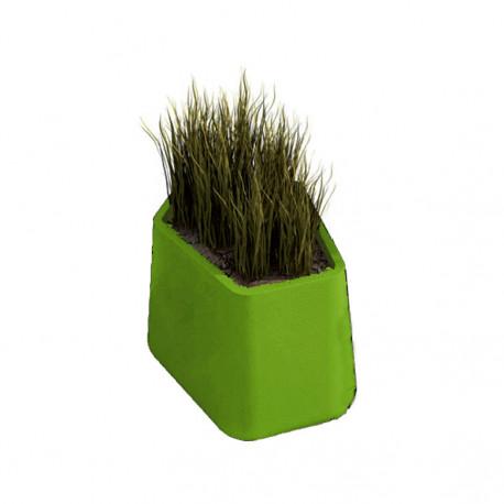 Pot Rock Garden Small, Qui est Paul ? vert