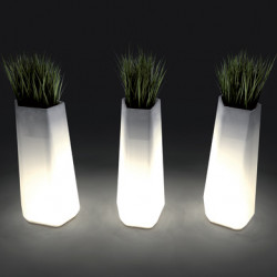 Pot Rock Garden Tall lumineux OUTDOOR, Qui est Paul? blanc