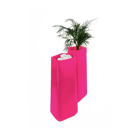 Pot Rock Garden Tall, Qui est Paul? fuchsia