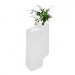 Pot Rock Garden Tall, Qui est Paul? blanc