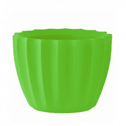 Petit Pot Star, Slide Design vert