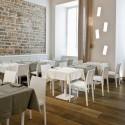Lot de 2 chaises en chêne, Young 420, Pedrali chêne laqué blanc
