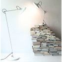 Lampe bureau Compose, Leitmotiv vert amande