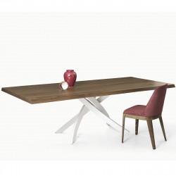 Table Sculptura en bois Noyer plaqué 200x106 cm