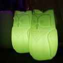 Lampe Bubo, Slide Design vert