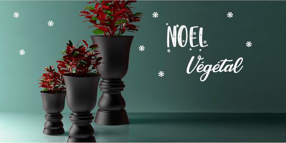 Noel_Vegetal.jpg